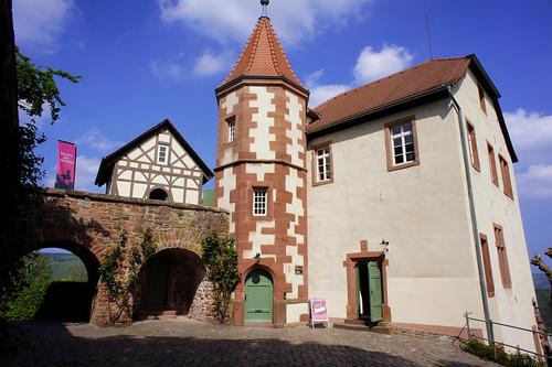 Dilsberg Castle