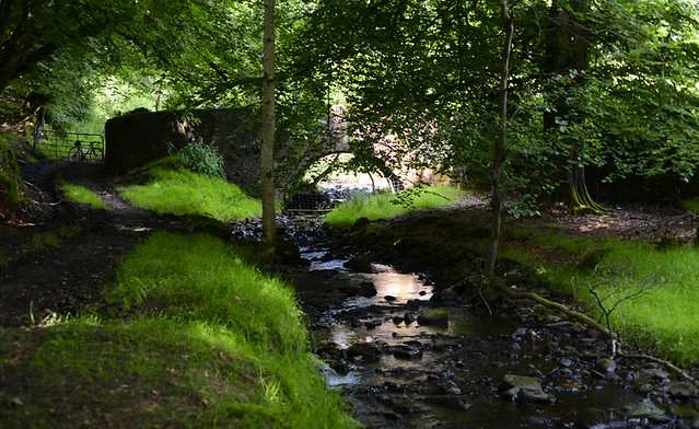 River Path, Tyrone