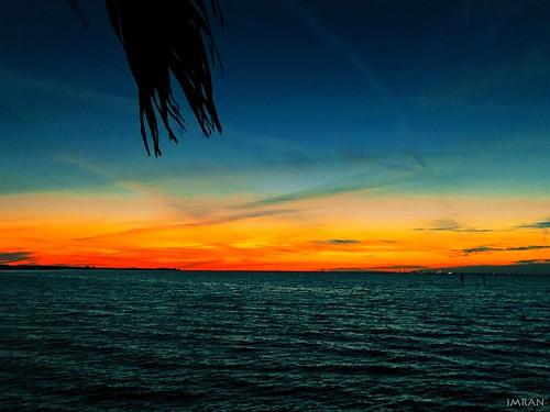 apollobeach beach clouds dusk florida imran imrananwar iphone iphone7 magic painting palmtree silhouette stpetersburg sunset tampabay water waterfront