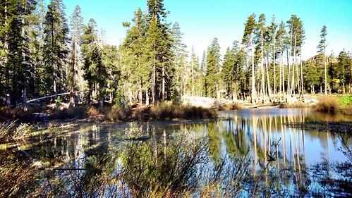 california roadtrip restarea caga uploaded:by=flickrmobile flickriosapp:filter=nofilter i80eastboundrestarea