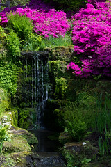 Waterfall at Wakehurst Place