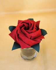 Origami - Flowers and Leaves