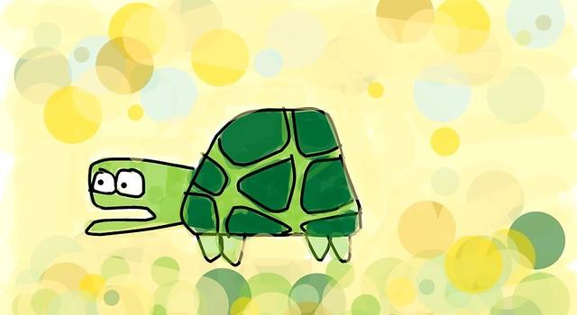 turtle paardii