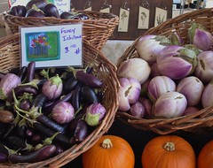 Eggplant from Maya's Farm