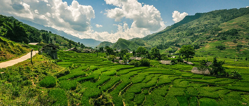 travel panorama landscape vietnam sapa