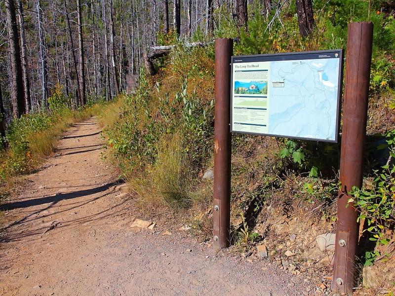IMG_4587 The Loop Trail