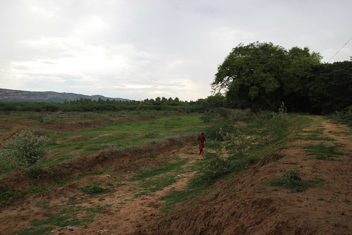 The desolate Thuvarimman Kanmai in the outskirts of Madurai city