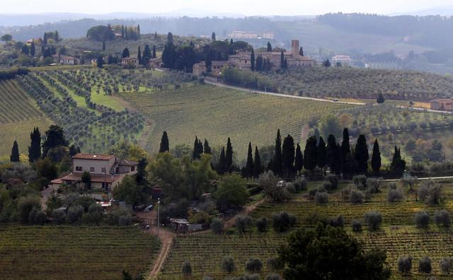 San Gimignano (29)
