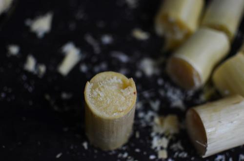 Sugarcane cylinders