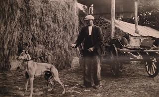 Mr Mulcahy and his greyhound in Rathwood, Abington, co limerick, Ireland, 1948