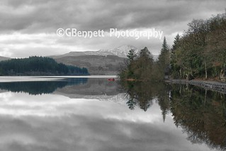 Loch Reflections