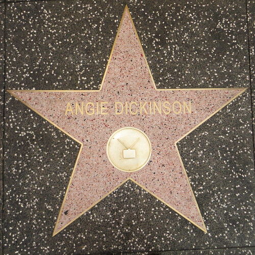 (half) my name on the (fake) hollywood walk of fame