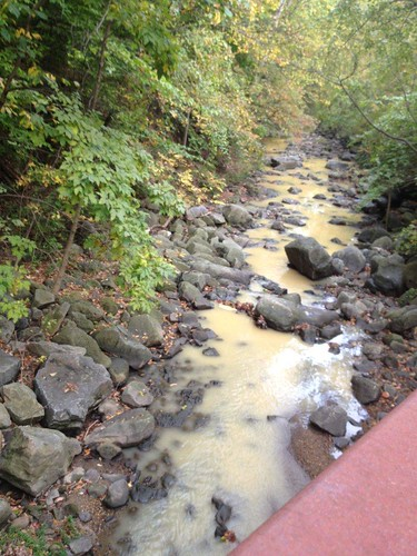 Image of sediment contamination of a stream.