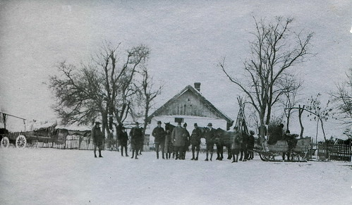 Winter scene with horse sleigh and shadoofs