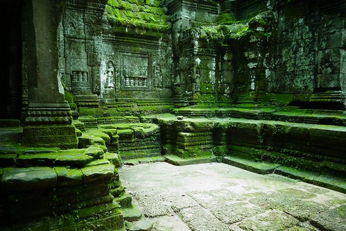 Preah Khan moss