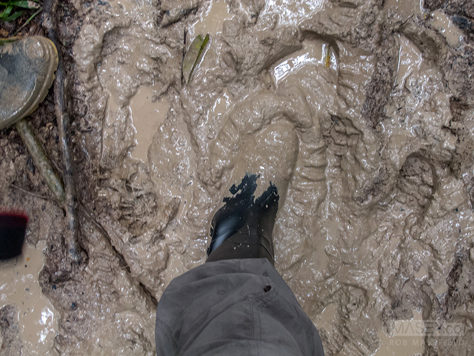 Slop, slop, slop. Pretty wet and murky underfoot.