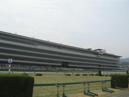 阪神競馬場,内馬場
