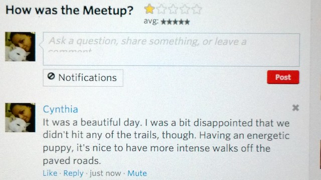 meetup review