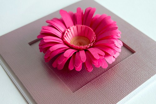 fringed flower card