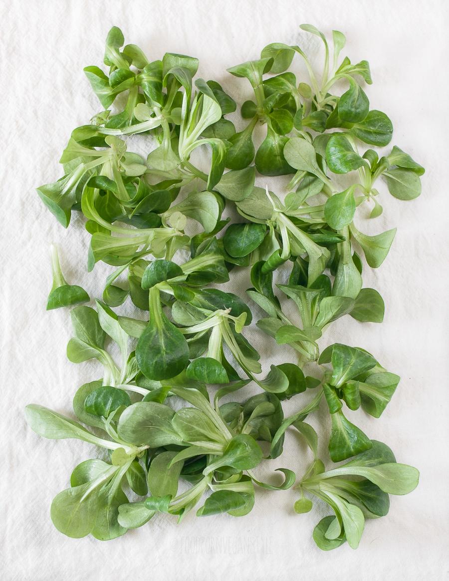 Lamb's lettuce (corn lettuce)