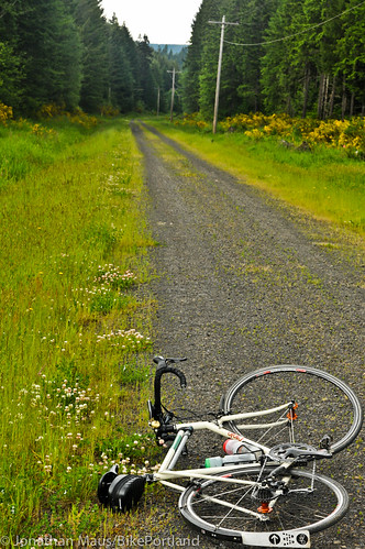 Burn Road Loop in Vernonia-36