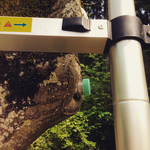 #t4 #geocaching #petling #ladder