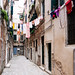 Venice by alliance1