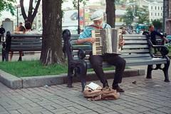 Весенний музыкант / Spring musician