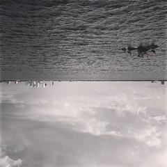 #tampa #florida #pier #pelicans #sky #iphone5 #philgates #gatesdesigns