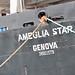 Small photo of The Ameglia Star