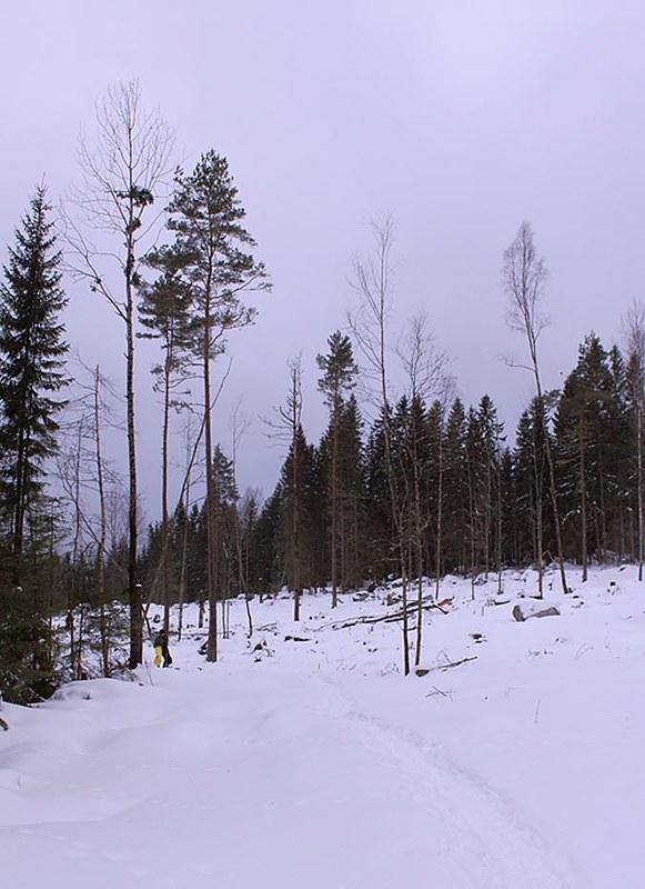 Skillberg, Vastmanland, Sweden