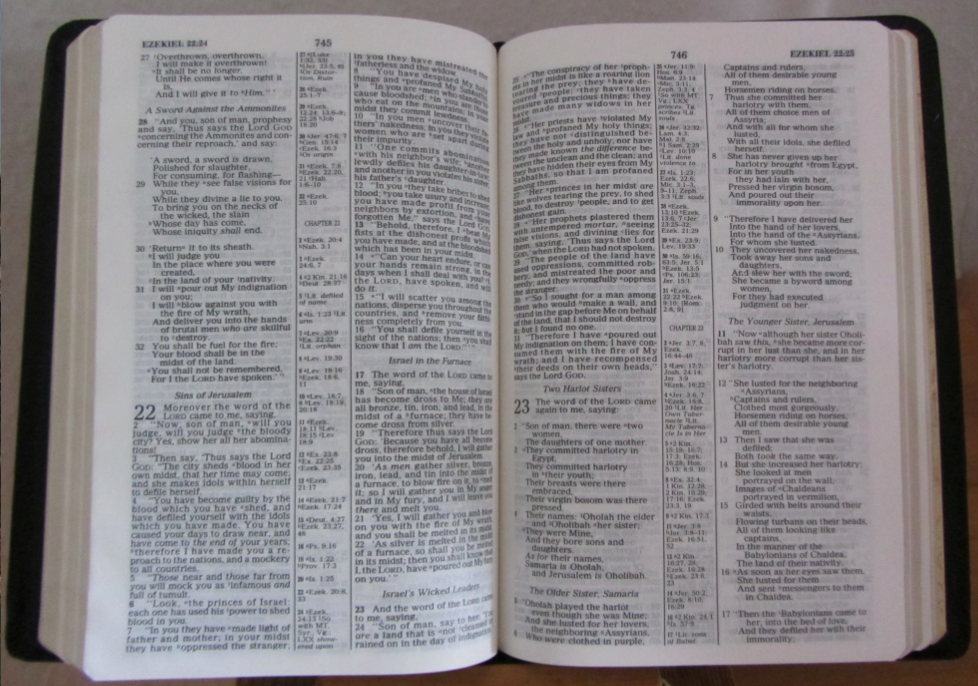 the new scofield reference bible pdf