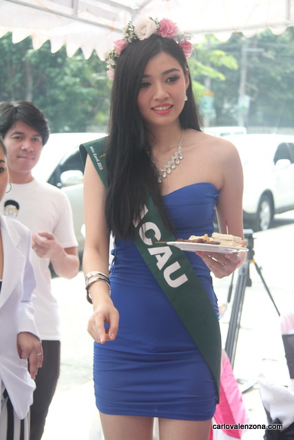 Miss Earth 2013 Candidates in Finessa Aesthetica  (11)
