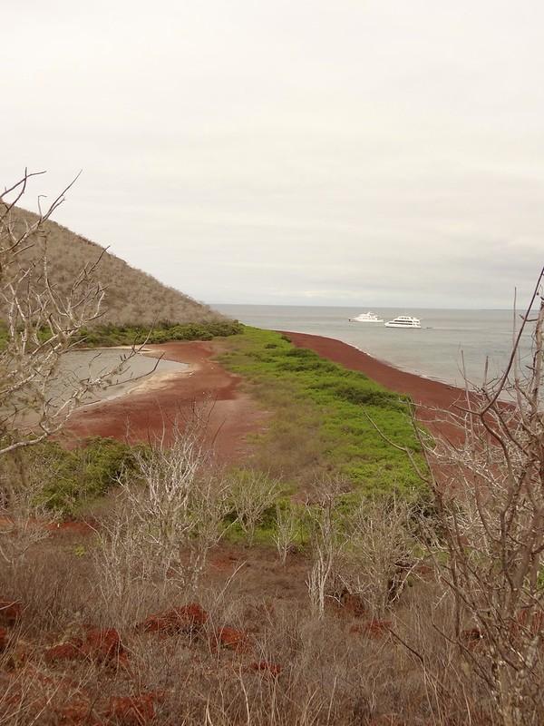 galapagos rabida cerro dragon 5