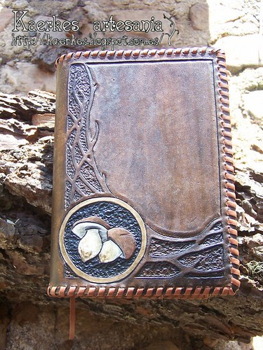 Cuaderno 2 boletus
