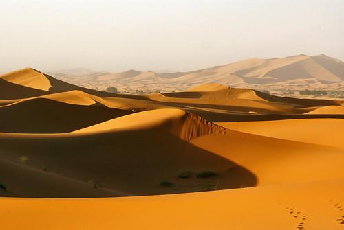 sunrise sand dunes ngc npc maroc duinen zand morrocco merzouga atsjebosma coth5 mygearandme mygearandmepremium mygearandmebronze mygearandmesilver mygearandmegold mygearandmeplatinum mygearandmediamond