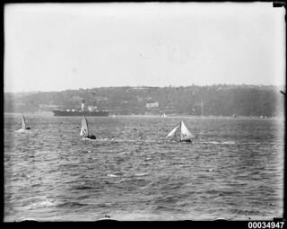 Three sloops and a cargo ship near Clifton Gardens, Sydney