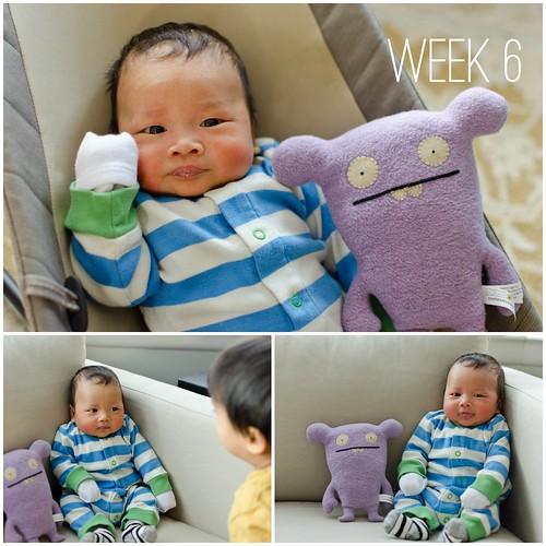Oliver - Week 6