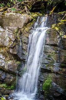 Cataloochee Valley Small Waterfall