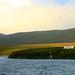 Landscape Perseverance Harbour Campbell Island Subantarctic New Zealand UNESCO World Heritage Status Nature Reserve