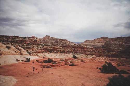 roaming the desert // www.inthelittleredhouse.blogspot.com
