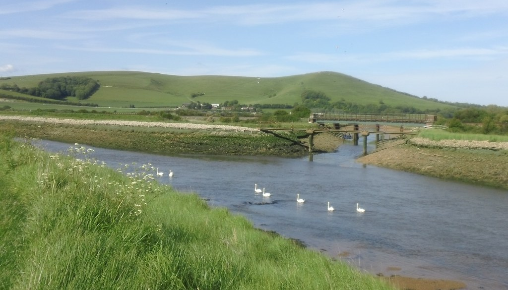 Swans in line astern River Ouse path to Lewes with several hang-gliders in the sky above Caburn Fort - may need a magnifying glass (as the actress said to the bishop...)
