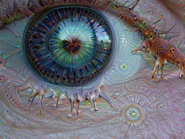Eye Dream of Genie