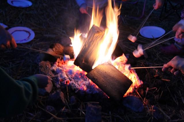 roasting marshmallows camping party