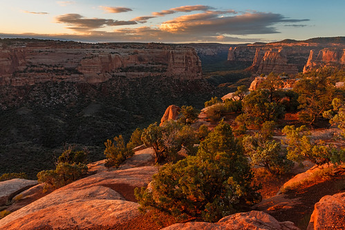 morning sunrise us sandstone colorado unitedstates canyon grandjunction coloradonationalmonument utahjuniper monumentcanyon