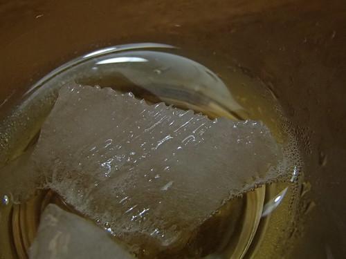南極的氷 - naniyuutorimannen - 您说什么!