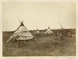 Summer lodges of the Ojibway / Tentes d'été des Ojibwés