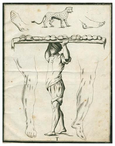 020-Letra T-Alfabeto in sogno-1720-Staatsbibliothek zu Berlin