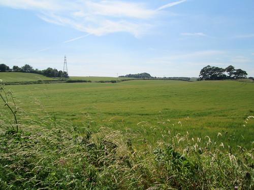 fields near Kirkcaldy,