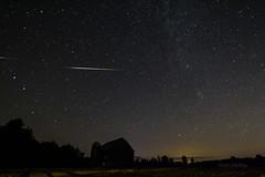 11 Perseid Meteors